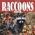 Raccoons for Kids